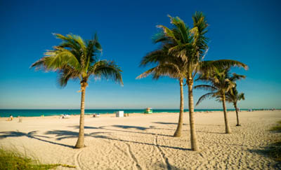 Backpacking Miami Beach Cheap Flights Hostels Tours